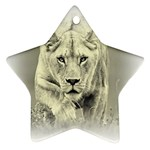 Animal Lion Hunting For Love Star Ornament (Two Sides)