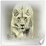 Animal Lion Hunting For Love Canvas 20  x 20