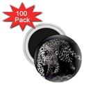 Animal Leopard 1.75  Magnet (100 pack)