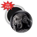 Animal Leopard 2.25  Magnet (100 pack)