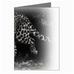 Animal Leopard Greeting Card