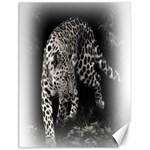 Animal Leopard Canvas 18  x 24