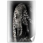Animal Leopard Canvas 24  x 36