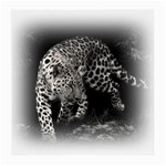 Animal Leopard Glasses Cloth (Medium)