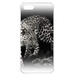 Animal Leopard Apple iPhone 5 Seamless Case (White)