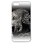 Animal Leopard Apple Seamless iPhone 5 Case (Clear)