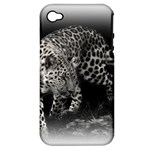 Animal Leopard Apple iPhone 4/4S Hardshell Case (PC+Silicone)