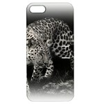 Animal Leopard Apple iPhone 5 Hardshell Case with Stand