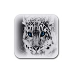 Animal Leopard In Snow Rubber Square Coaster (4 pack)