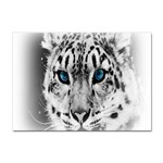 Animal Leopard In Snow Sticker A4 (100 pack)