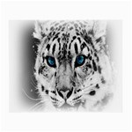 Animal Leopard In Snow Glasses Cloth (Small)