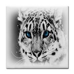 Animal Leopard In Snow Face Towel