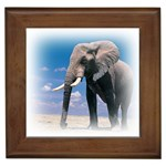 Animals Elephants Lonely But Strong Framed Tile