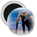 Animals Elephants Lonely But Strong 3  Magnet