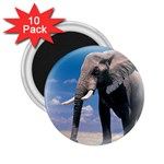 Animals Elephants Lonely But Strong 2.25  Magnet (10 pack)
