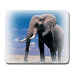 Animals Elephants Lonely But Strong Large Mousepad