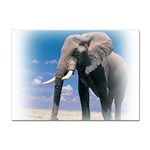 Animals Elephants Lonely But Strong Sticker (A4)