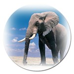 Animals Elephants Lonely But Strong Magnet 5  (Round)