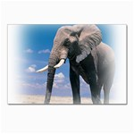 Animals Elephants Lonely But Strong Postcard 4 x 6  (Pkg of 10)