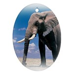 Animals Elephants Lonely But Strong Oval Ornament (Two Sides)