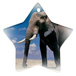 Animals Elephants Lonely But Strong Star Ornament (Two Sides)