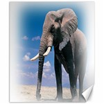 Animals Elephants Lonely But Strong Canvas 8  x 10