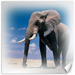 Animals Elephants Lonely But Strong Canvas 20  x 20