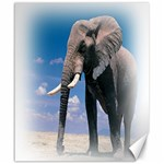 Animals Elephants Lonely But Strong Canvas 20  x 24