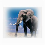 Animals Elephants Lonely But Strong Glasses Cloth (Small, Two Sides)
