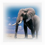 Animals Elephants Lonely But Strong Glasses Cloth (Medium, Two Sides)