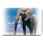 Animals Elephants Lonely But Strong Large Doormat