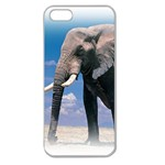Animals Elephants Lonely But Strong Apple Seamless iPhone 5 Case (Clear)