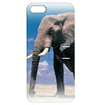 Animals Elephants Lonely But Strong Apple iPhone 5 Hardshell Case with Stand