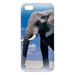 Animals Elephants Lonely But Strong iPhone 5 Premium Hardshell Case