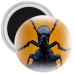 Animal Oil Beetle 3  Magnet
