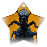 Animal Oil Beetle Ornament (Star)