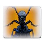 Animal Oil Beetle Large Mousepad