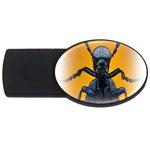 Animal Oil Beetle USB Flash Drive Oval (4 GB)
