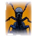 Animal Oil Beetle Apple iPad 3/4 Hardshell Case