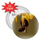 Bee Hard Work 2.25  Button (10 pack)