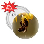Bee Hard Work 2.25  Button (100 pack)
