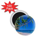 Beach Palm Trees Stretching Out For Love 1.75  Magnet (100 pack)