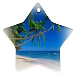 Beach Palm Trees Stretching Out For Love Star Ornament (Two Sides)