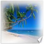 Beach Palm Trees Stretching Out For Love Canvas 12  x 12