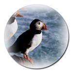 Atlantic Puffin Birds Round Mousepad