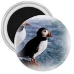 Atlantic Puffin Birds 3  Magnet