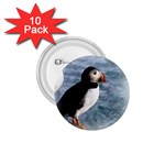 Atlantic Puffin Birds 1.75  Button (10 pack)