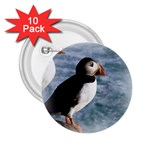 Atlantic Puffin Birds 2.25  Button (10 pack)
