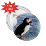 Atlantic Puffin Birds 2.25  Button (100 pack)
