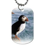 Atlantic Puffin Birds Dog Tag (One Side)